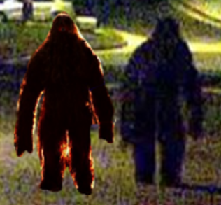 Bigfoot in Anaheim Hills