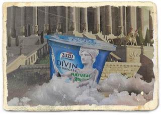 pareri forum zuzu divin iaurt in stil grecesc informatii nutritionale