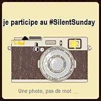 http://www.londrespourlesenfants.com/blog/ma-semaine-instagram/silent-sunday-186.html