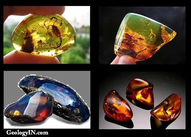 http://www.geologyin.com/2016/05/types-of-amber.html