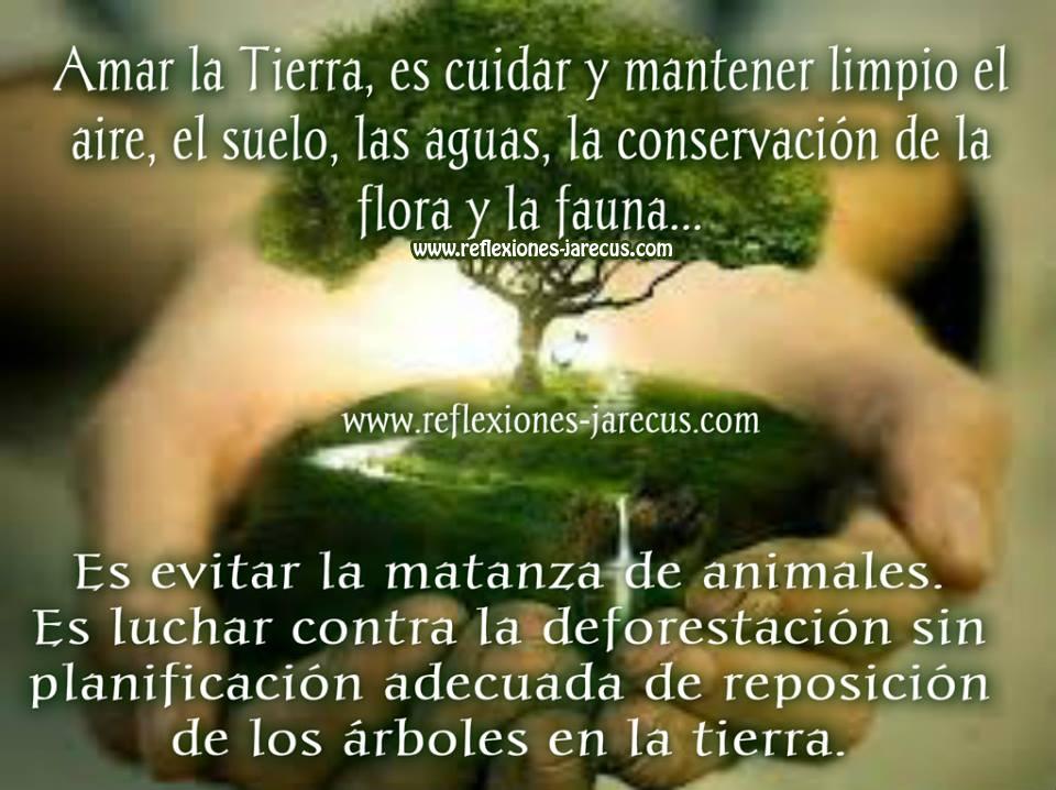 Amar la Tierra es cuidar y mantener limpio el aire, el suelo, las aguas, la conservación de la flora y la fauna.  Es evitar la matanza de animales.  Es luchar contra la de-forestación sin planificación adecuada de reposición de los árboles en la tierra.