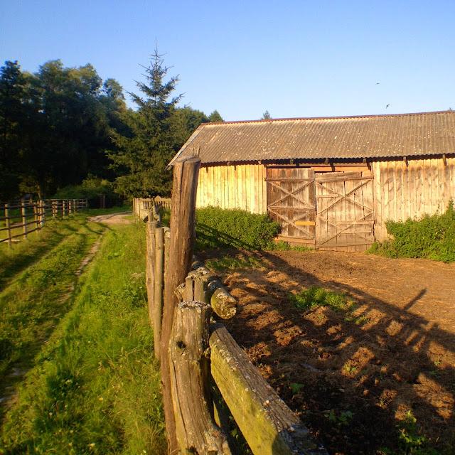 kampinos, las, stodoła