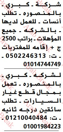 وظائف وسيط الدلتا يوم الجمعة - موقع عرب بريك