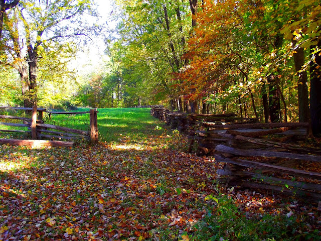 Indiana Photo of the Day - Lincoln Boyhood National Memorial - Pioneer Rail Fence