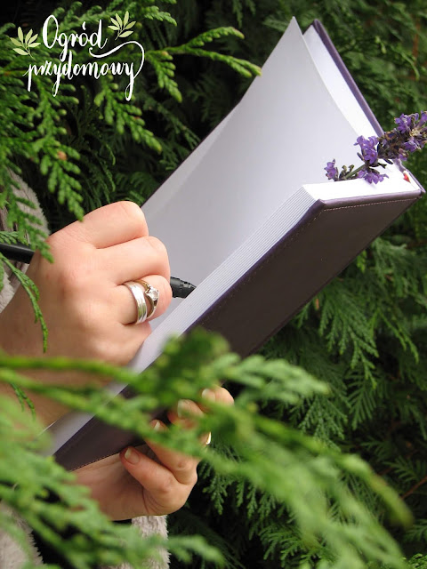 prezent dla kobiety, ogród przydomowy