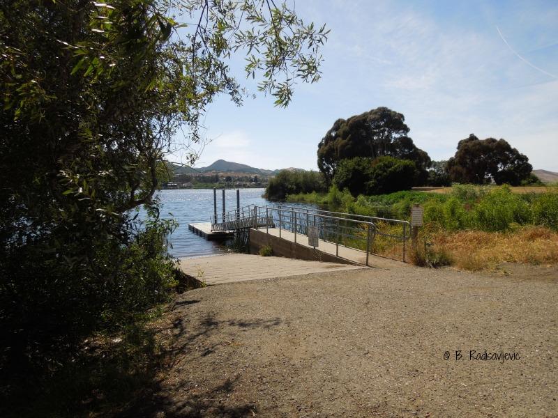 Staying Cool at Laguna Lake in San Luis Obispo