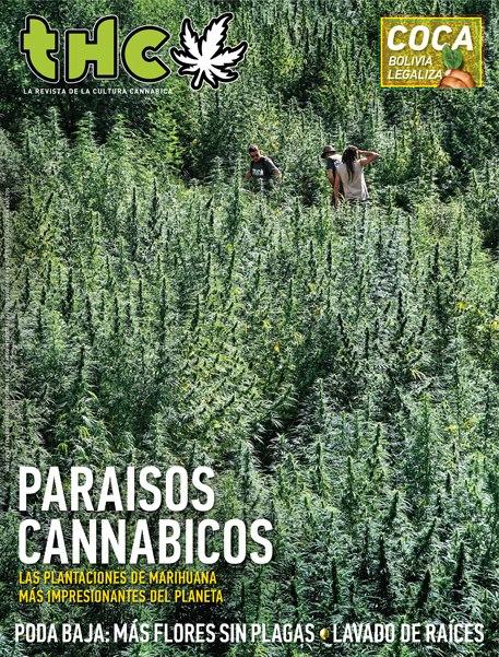 REVISTA THC 58 | PARAÍSOS CANNÁBICOS
