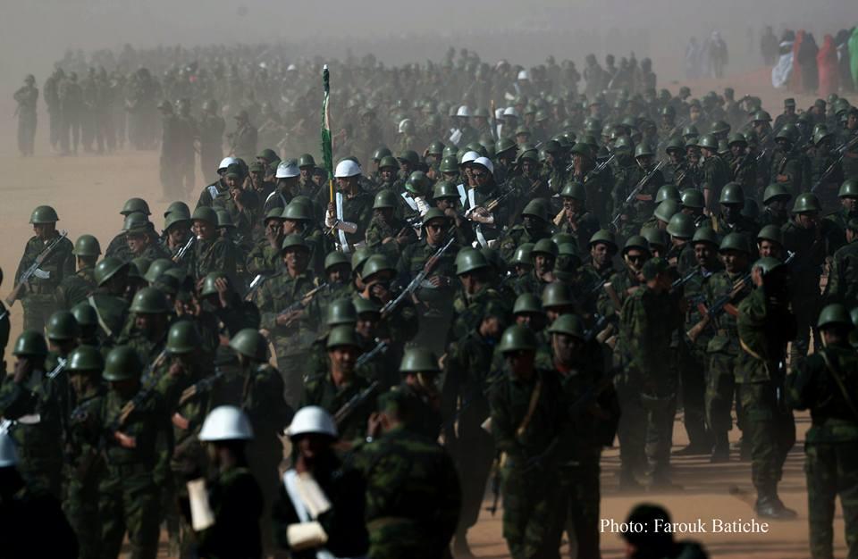 """Resultado de imagen de los saharauis festejan ejercito frente polisario"""""""