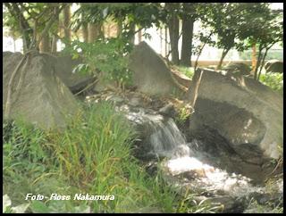 Foto de riacho - local Japão