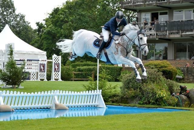 Caballo blanco saltando con su Jinete