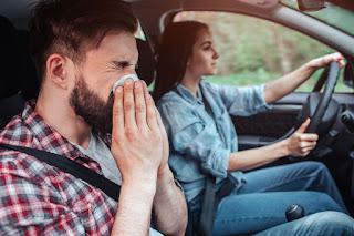 Alergia primaveral: cómo afecta a la conducción - FÉNIX DIRECTO