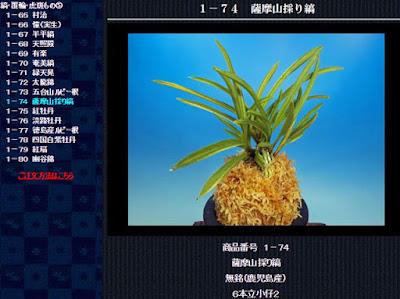 http://www.fuuran.jp/1-74.html