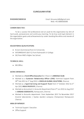 Front Office Executive Resume 1