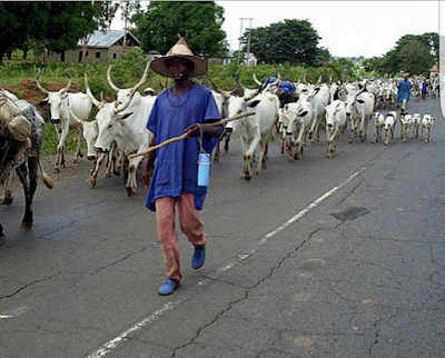 Fulani herdsmen as the new power brokers in Nigeria: Alibaba describes