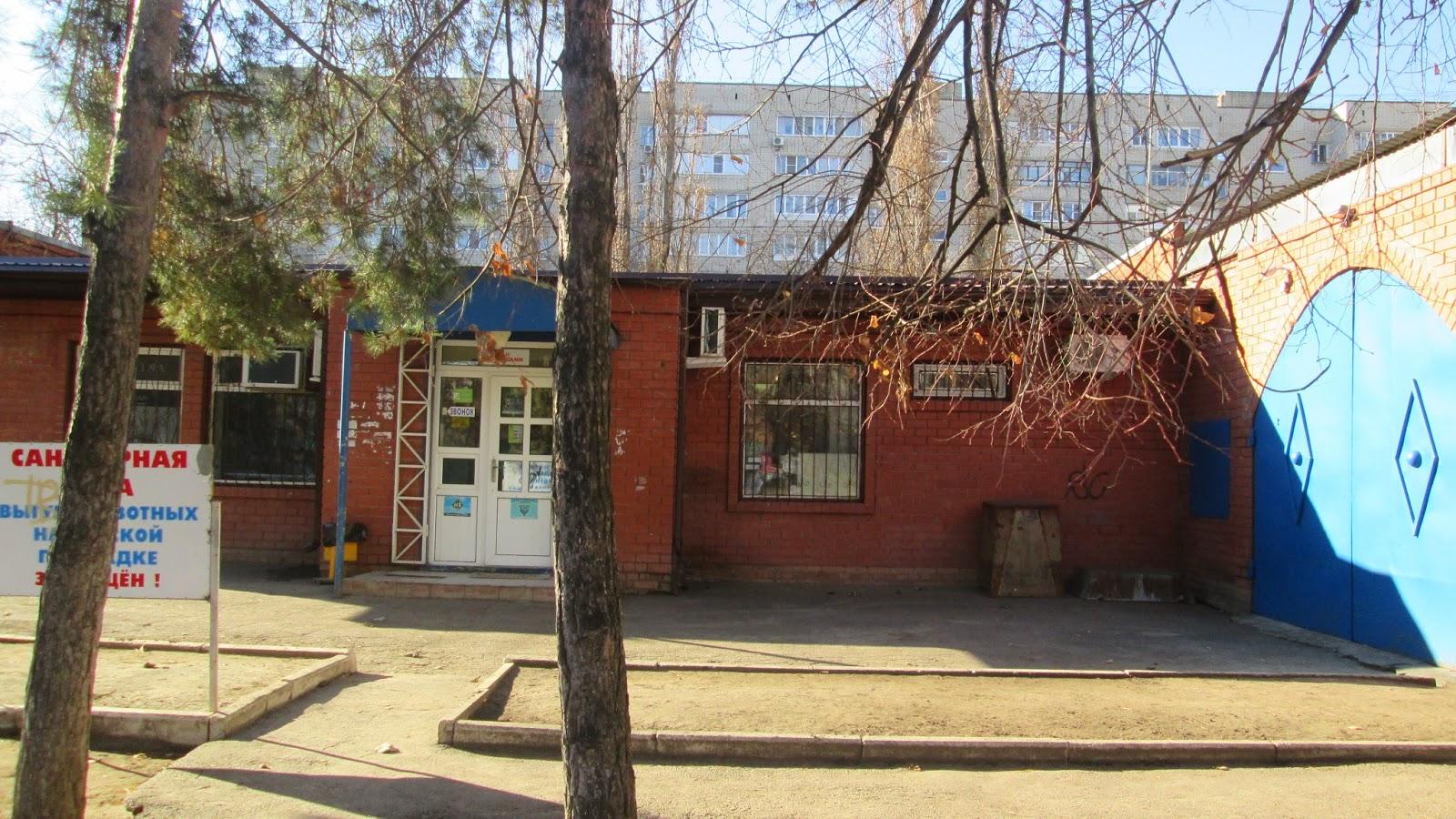 Детская поликлиника осенняя улица
