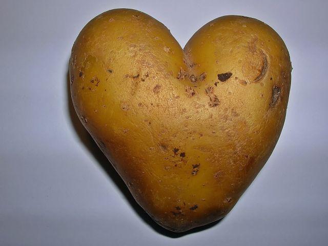 walentynki, serduszka, ciekawostki przyrodnicze, ziemniak