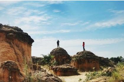 Bukit Jamur Destinasi Wisata Kekinian yang Dimiliki Gresik, Karena Alami Nan Unik