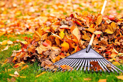 Fall Maintenance | Fall Maintenance Tips | P.T.R.C. Inc.