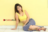Cute Telugu Actress Shunaya Solanki High Definition Spicy Pos in Yellow Top and Skirt  0294.JPG