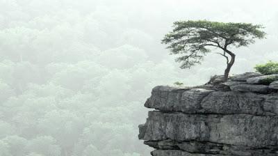 Risultati immagini per chan zen