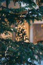 Mini-Série #2 - Q&A de Natal