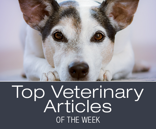 Top Veterinary Articles of the Week
