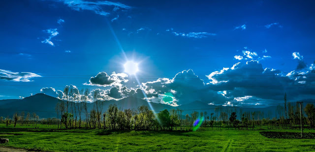 Sunlight Nature Background