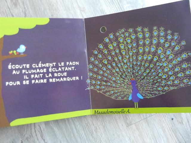 || Mes oiseaux (Présentation & Avis)(Chut, les enfants lisent # 66)