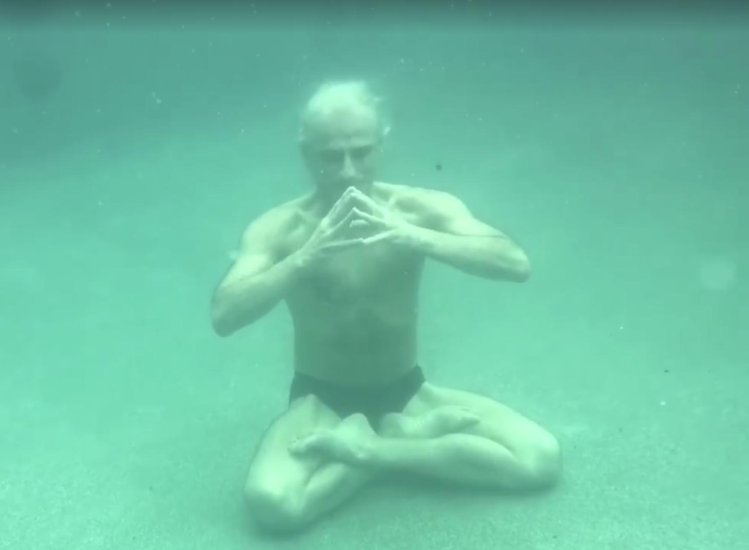 Krishnamacharya\'s Original Ashtanga Vinyasa Krama Yoga and beyond ...