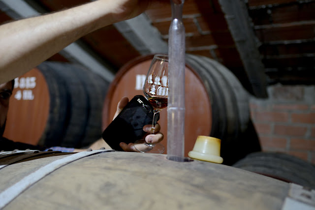 Durabilidade do Cat® S41 convence setor vitivinícola