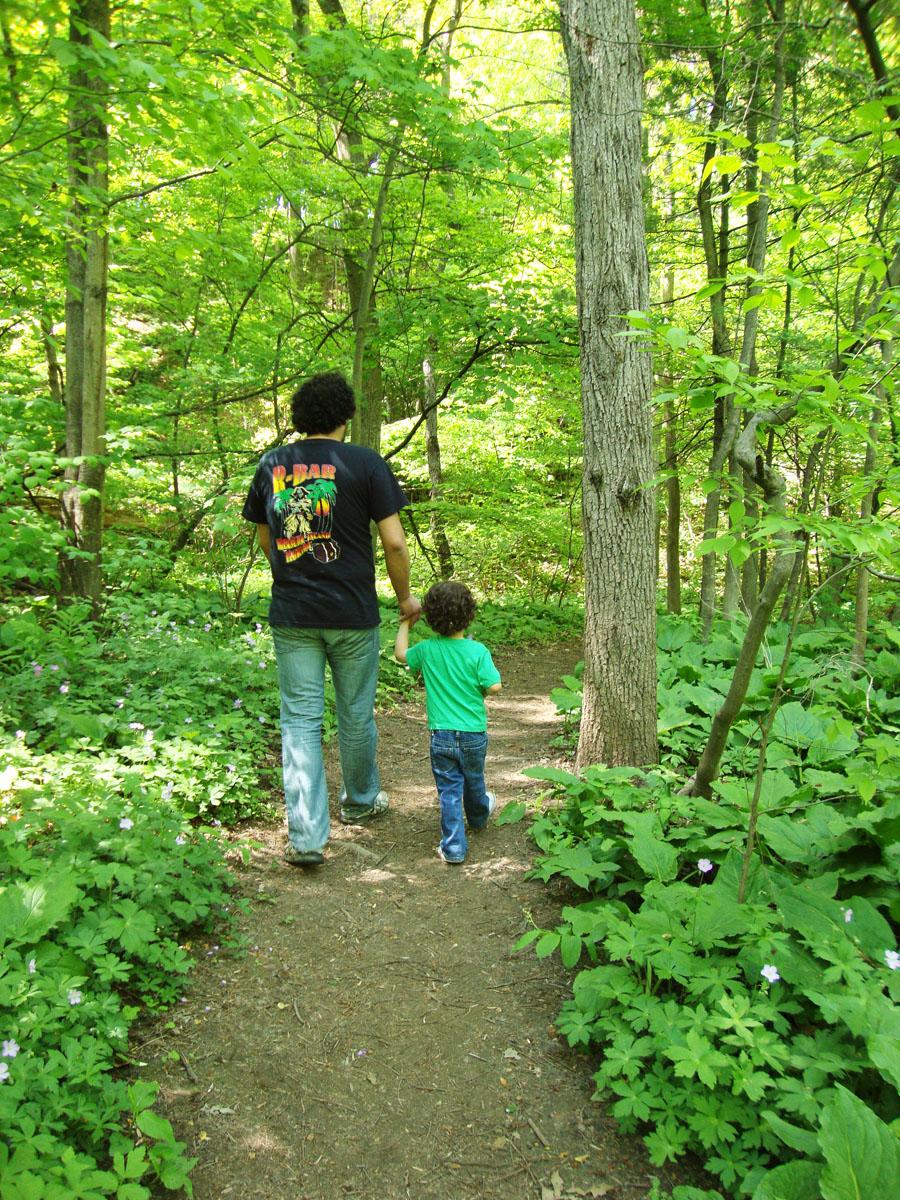 nature long weekend walks victoria earth walk nudist quiet hollow being wilderness nesara galactic republic