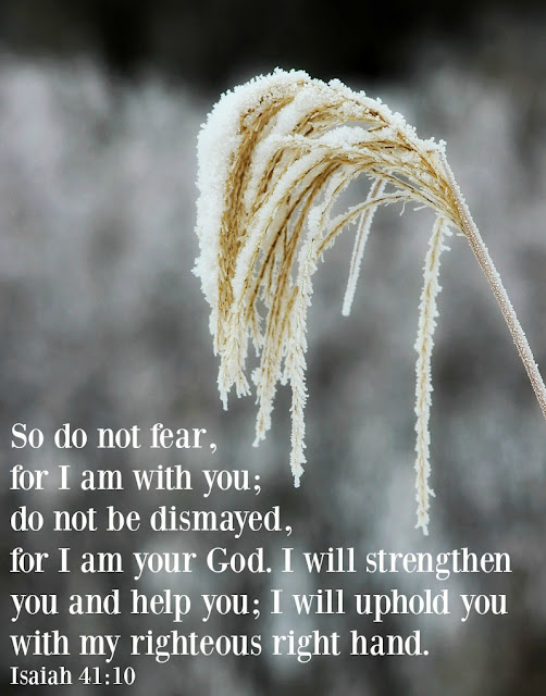 do not fear, inspiring verse, bible verse, God's word, http://bec4-beyondthepicketfence.blogspot.com/2015/11/sunday-verses_14.html