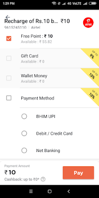 true balance payment options