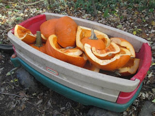 wagon full of cut up pumpkins