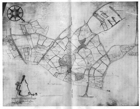 Scan of a drawing of a map on vellum c1735 showing plan of garden designed by Charles Bridgeman for Sir Jeremy Sambrooke. (courtesy of Goucester Record Office)