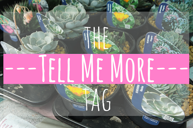 rows of cacti with 'the tell me more tag' written over the picture on a pink bar