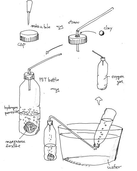 Free Science Fair Projects Experiments: Experiment with
