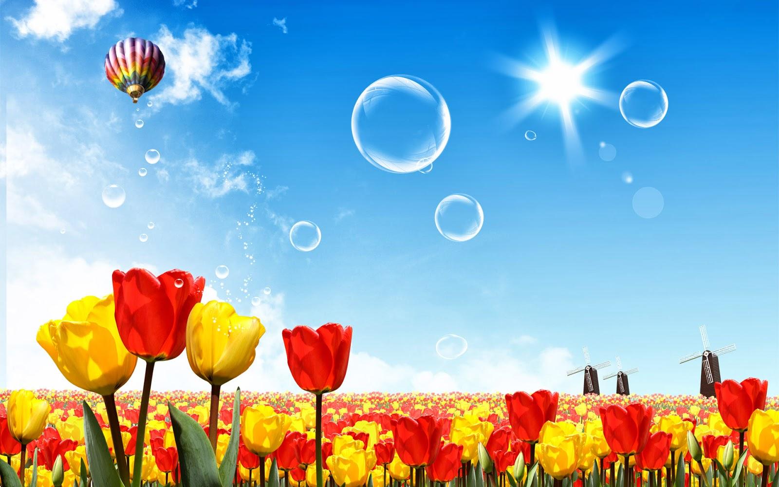 Fondos Hd Fondo De Pantalla Flores De Colores