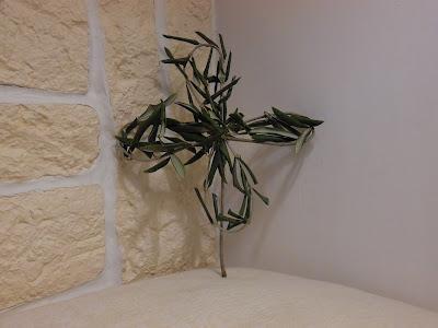 ilprofumodelcalicanto: Con i rametti di ulivo, della ...