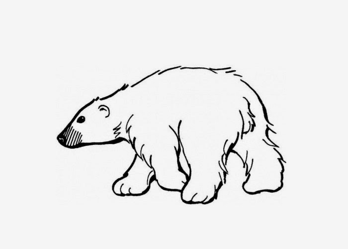 Polar bear coloring page free coloring pages and for Polar bear coloring pages