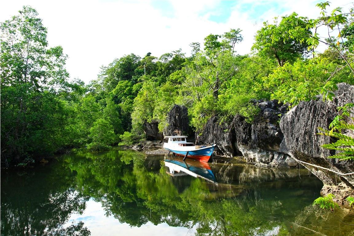 Tipikal lingkungan di sekitar pulau, yaitu dataran karang