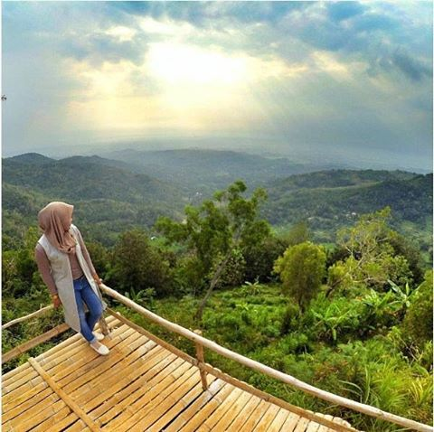 Wisata Ke Bukit Lintang Sewu