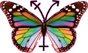 Resultado de imagen para simbolos transgenero