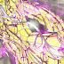 Odisseu de Serpentário tem a sua aparência revelada em imagem oficial!