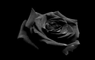 Στο πένθος η ΕΛ.ΑΣ. – Νεκρός μετά από τροχαίο 36χρονος αστυνομικός