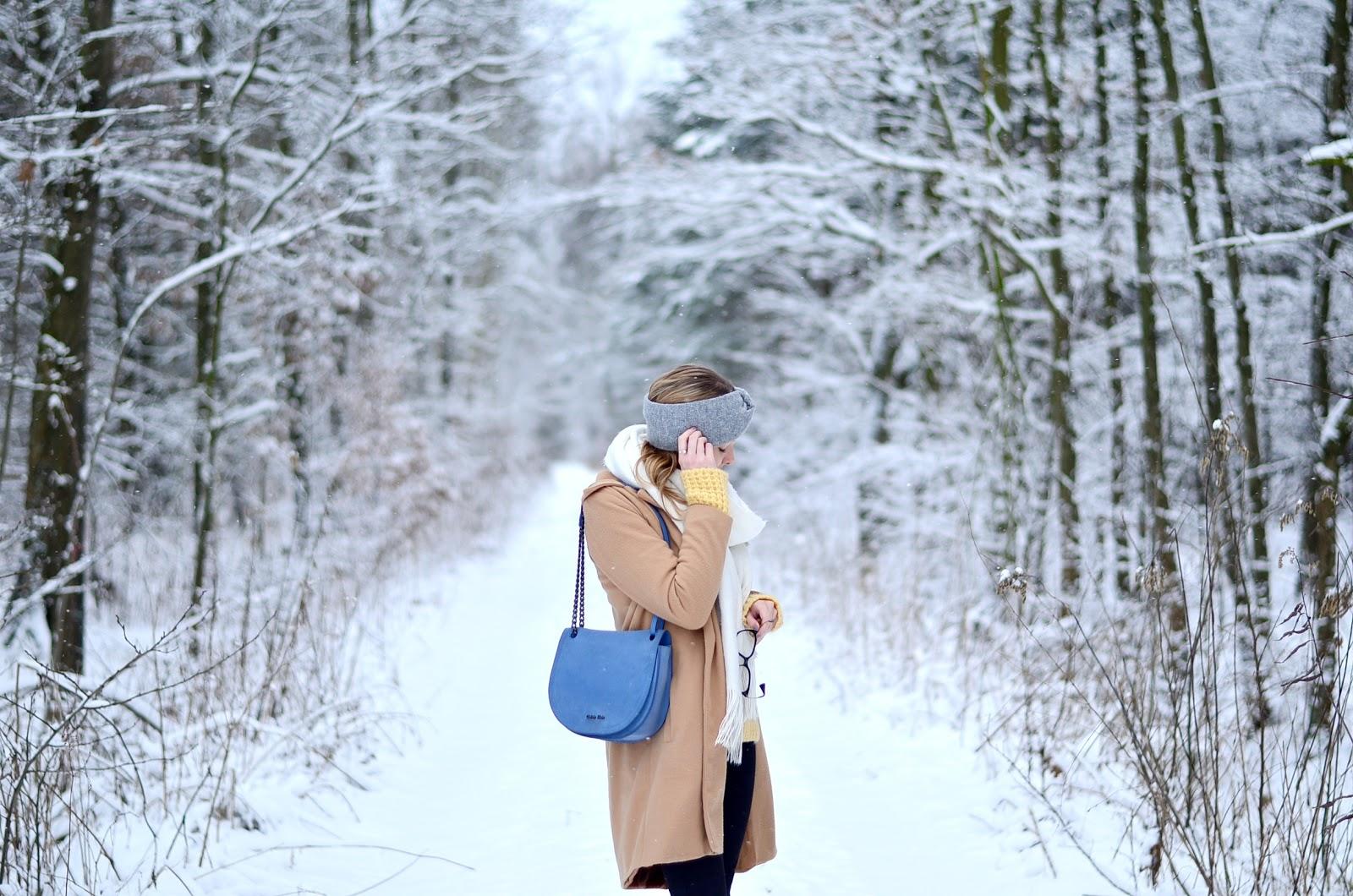 W zgodzie z zimowym klimatem- zimowe zdjęcia wprost z pobliskiego lasu.