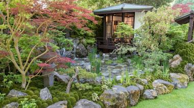 O-mo-te-na-shi no NIWA. La hospitalidad japonesa premiada en Chelsea