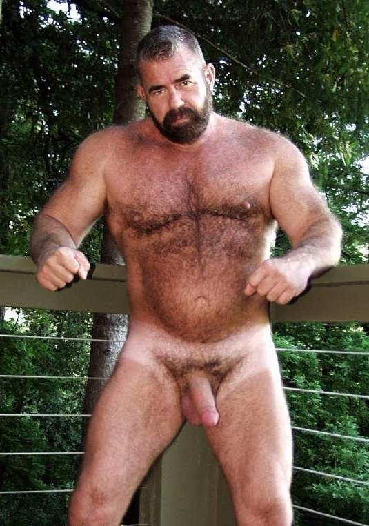 Videos gay hairy bear
