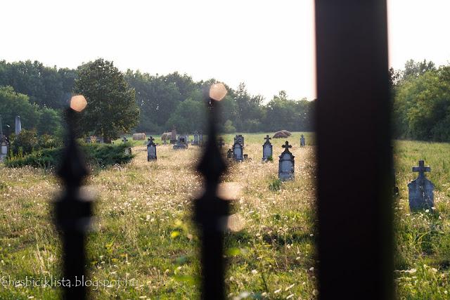 Szőregi temető a bicikliút mellette halad