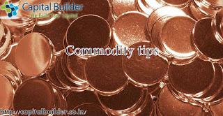 http://capitalbuilder.co.in/